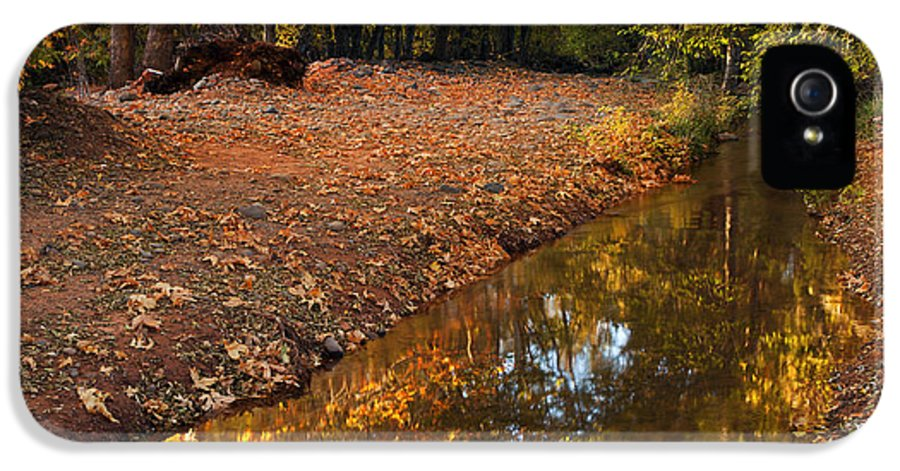 Autumn IPhone 5 Case featuring the photograph Arizona Autumn Reflections by Mike Dawson