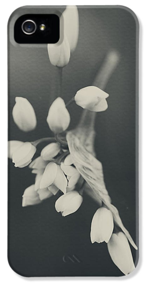 Flowers IPhone 5 Case featuring the photograph As I Emerge by Laurie Search