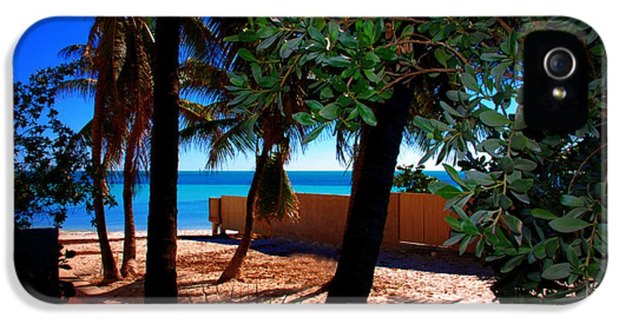 Dogs Beach IPhone 5 Case featuring the photograph At Dog's Beach In Key West by Susanne Van Hulst