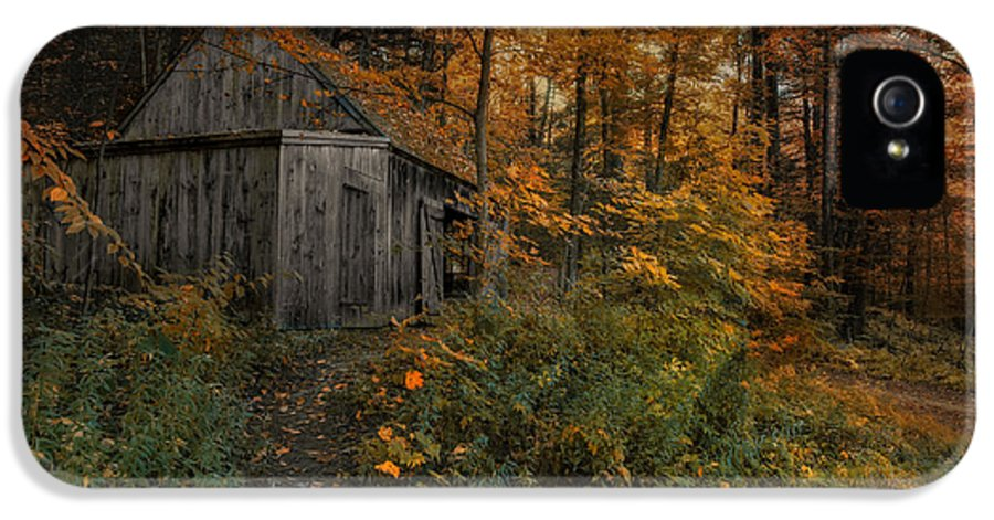 Barn IPhone 5 Case featuring the photograph Autumn Canopy by Robin-Lee Vieira