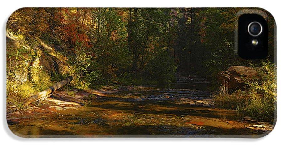 Autumn IPhone 5 Case featuring the photograph Autumn Colors By The Creek by Saija Lehtonen