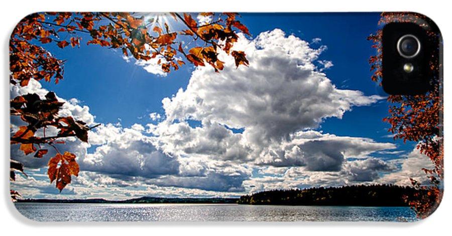 Landscape IPhone 5 Case featuring the photograph Autumn Confidential by Bob Orsillo