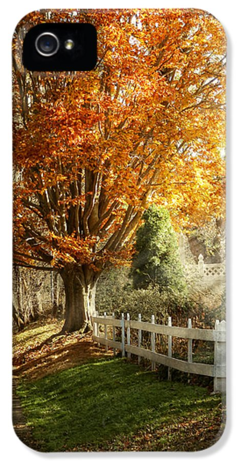 Autumn IPhone 5 Case featuring the photograph Autumn - Westfield Nj - I Love Autumn by Mike Savad