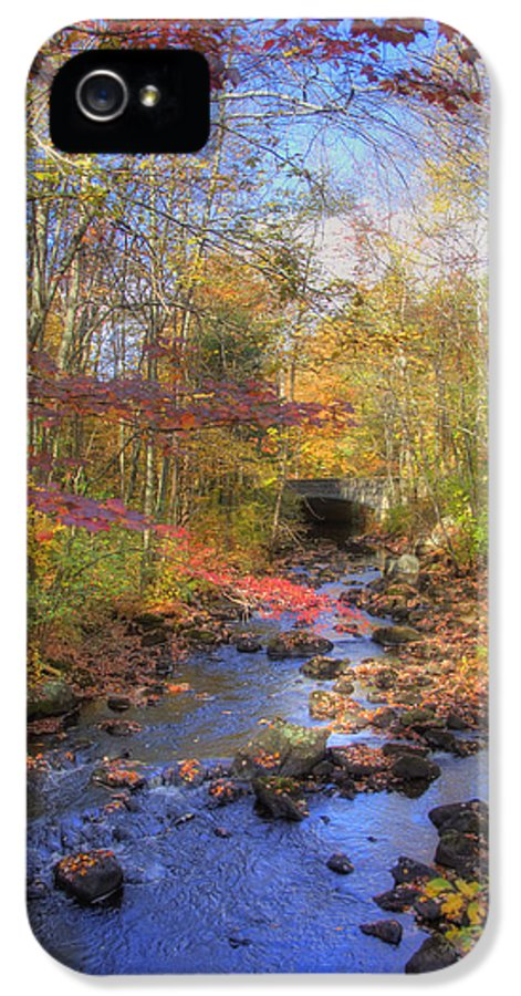 New England Autumn Scenes IPhone 5 Case featuring the photograph Autumn Woods by Joann Vitali