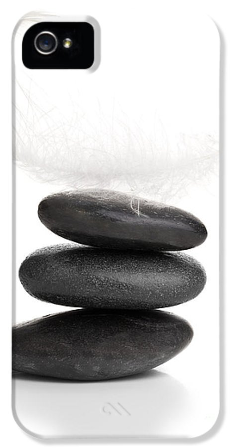 Balance IPhone 5 Case featuring the sculpture Balance by Shawn Hempel
