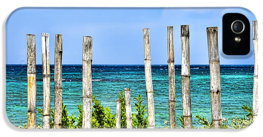Bamboo IPhone 5 Case featuring the photograph Bamboo Fence by Keith Ducker