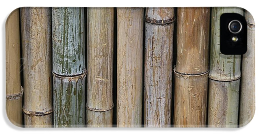 Bamboo IPhone 5 Case featuring the photograph Bamboo Fence by Tilen Hrovatic