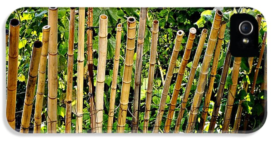 Bamboo IPhone 5 / 5s Case featuring the photograph Bamboo Fencing by Lilliana Mendez