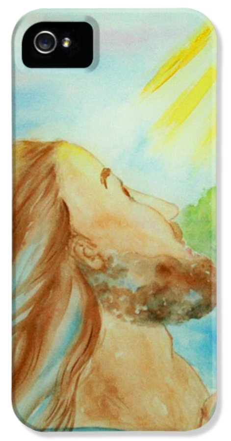 Jesus IPhone 5 Case featuring the painting Baptism Of Christ by Melanie Palmer
