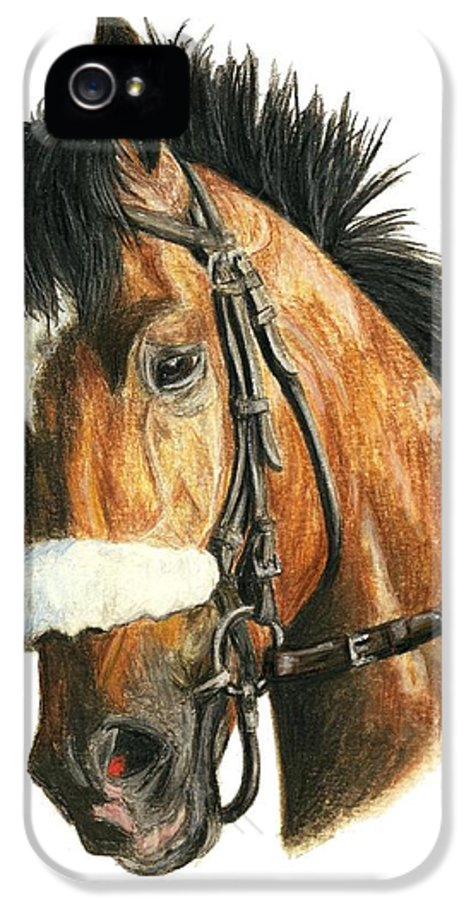 Barbaro IPhone 5 Case featuring the painting Barbaro by Pat DeLong