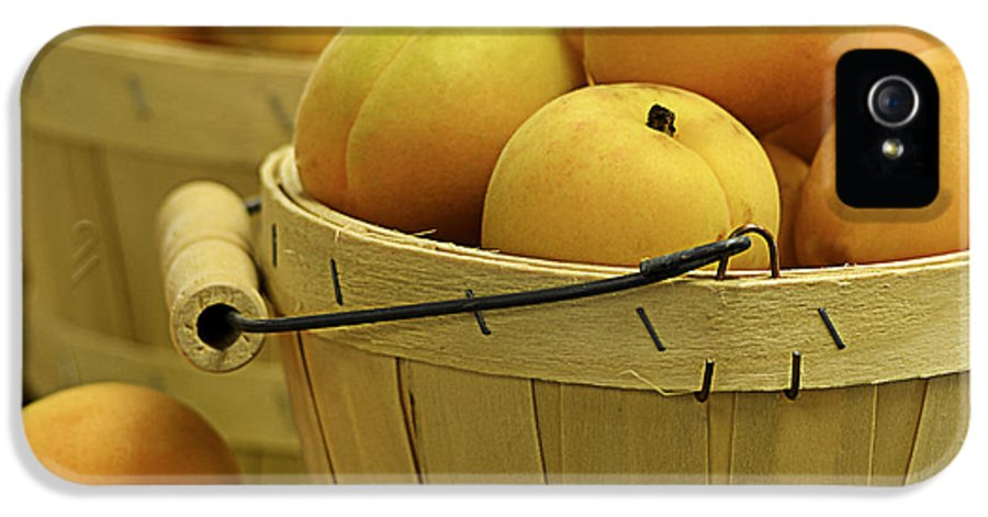 Apricots IPhone 5 Case featuring the photograph Baskets Of Apricots Squared by Julie Palencia