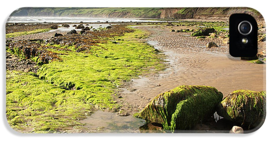 Beach IPhone 5 Case featuring the photograph Beach At Robin Hoods Bay by Deborah Benbrook