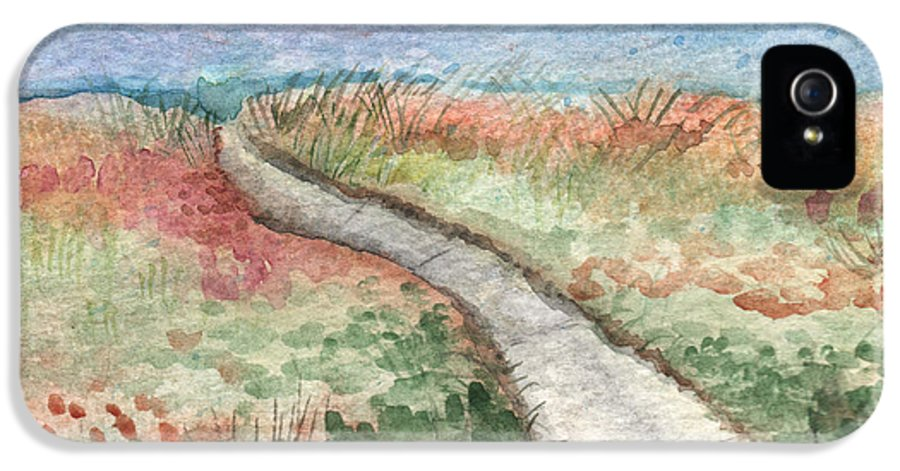 Beach IPhone 5 Case featuring the painting Beach Path by Linda Woods