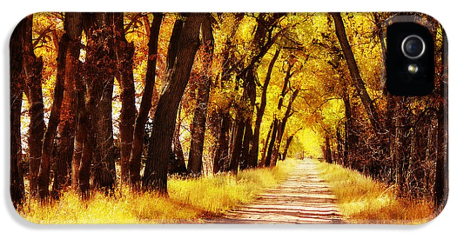 Nebraska IPhone 5 Case featuring the photograph Beautiful Fall Day In Nebraska by Julie Hamilton
