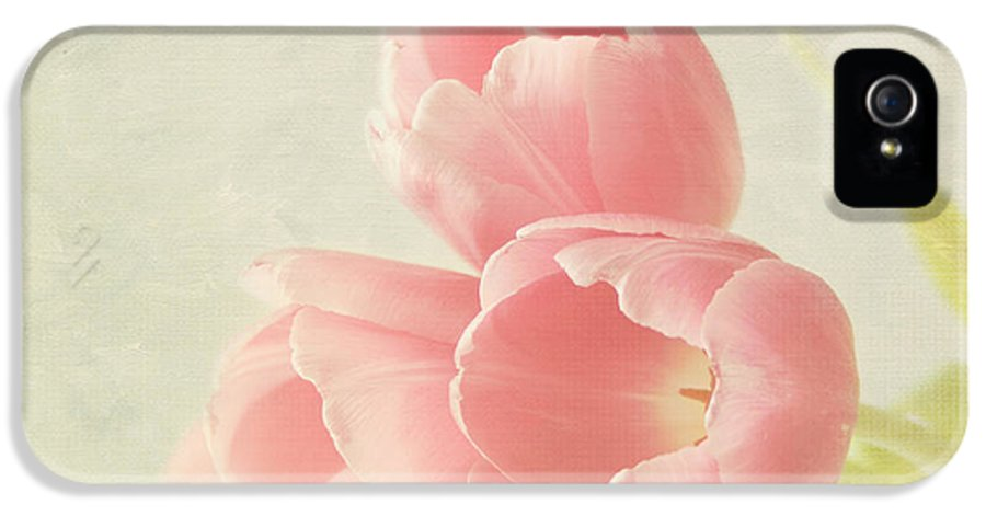 Pink Flower IPhone 5 Case featuring the photograph Beauty In Three by Kim Hojnacki