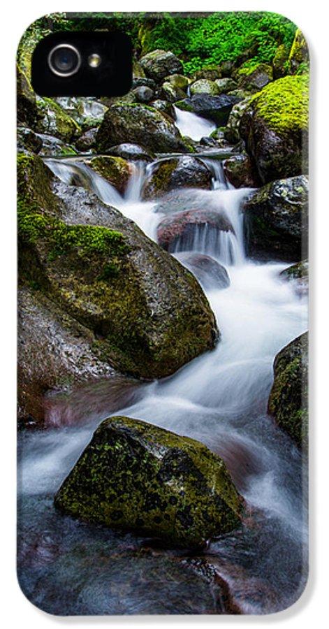 Below Rainier IPhone 5 Case featuring the photograph Below Rainier by Chad Dutson