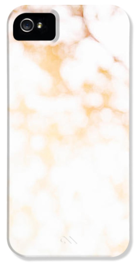 Abstract IPhone 5 Case featuring the photograph Beneath A Tree 14 4945 Triptych Set 1 Of 3 by Ulrich Schade