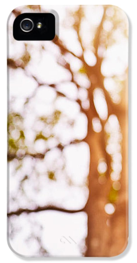 Abstract IPhone 5 Case featuring the photograph Beneath A Tree 14 5286 Triptych Set 1 Of 3 by Ulrich Schade