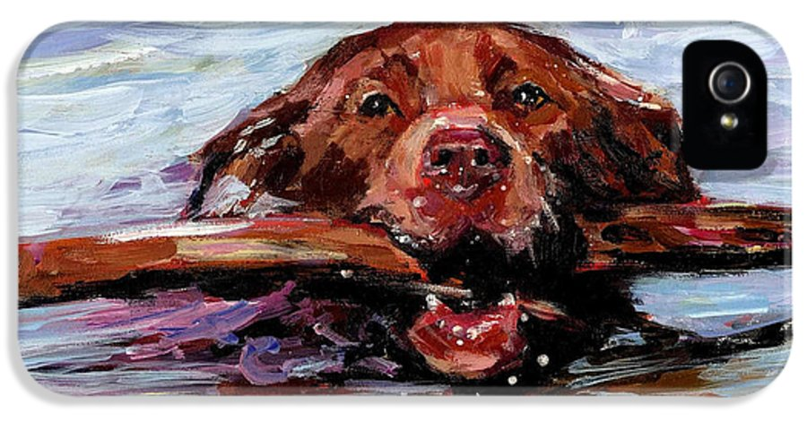 Chocolate Labrador Retriever IPhone 5 Case featuring the painting Big Stick by Molly Poole