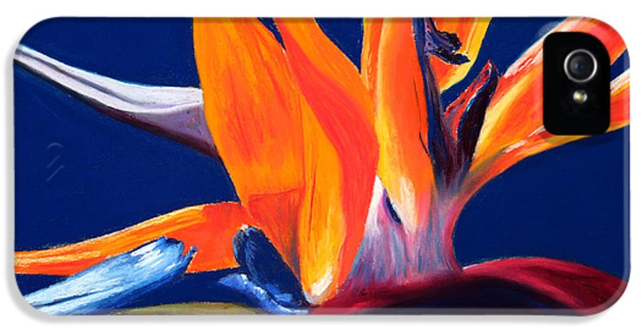 Bird Of Paradise IPhone 5 / 5s Case featuring the painting Bird Of Paradise by Mary Benke