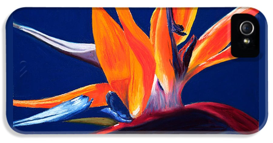 Bird Of Paradise IPhone 5 Case featuring the painting Bird Of Paradise by Mary Benke