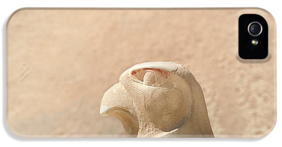 Egypt IPhone 5 Case featuring the photograph Bird Of Prey.. by A Rey