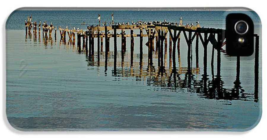 Alabama Photographer IPhone 5 Case featuring the painting Birds On Old Dock On The Bay by Michael Thomas