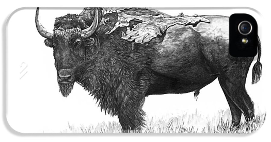 Bison IPhone 5 Case featuring the painting Bison by Aaron Spong