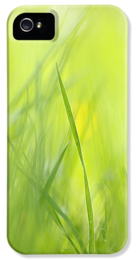 Spring IPhone 5 Case featuring the photograph Blades Of Grass - Green Spring Meadow - Abstract Soft Blurred by Matthias Hauser