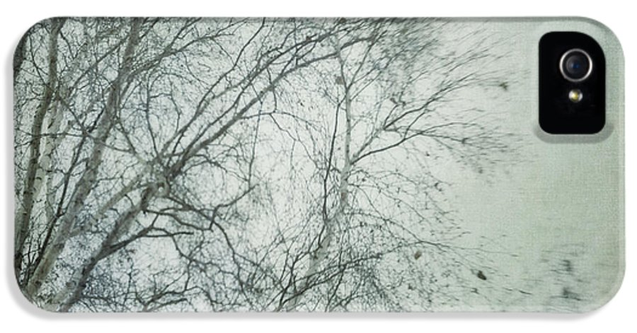 Twig IPhone 5 Case featuring the photograph bleakly I by Priska Wettstein