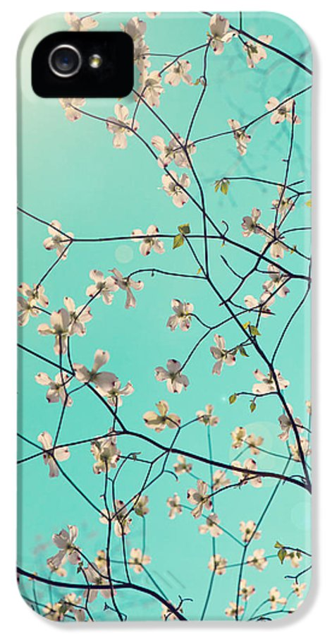 Photography IPhone 5 Case featuring the photograph Bloom by Kim Fearheiley