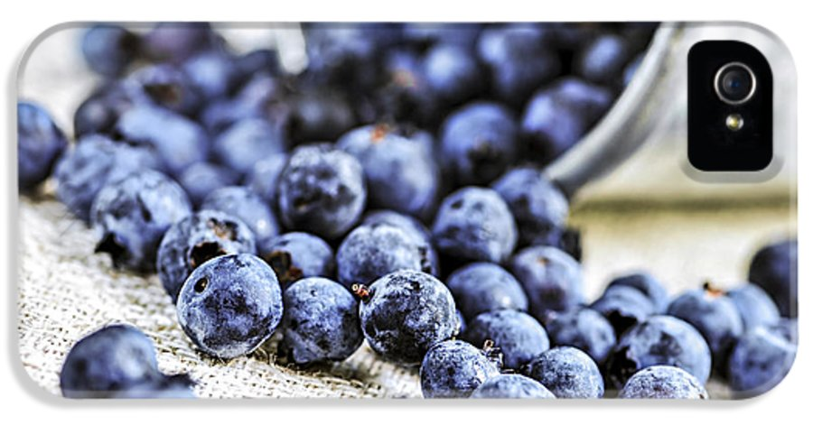 Blueberry IPhone 5 / 5s Case featuring the photograph Blueberries by Elena Elisseeva