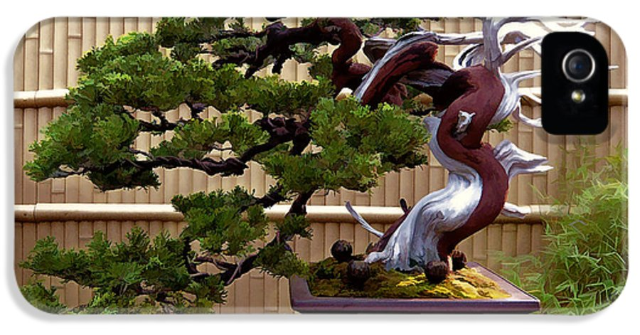 Bonsai Plant Tree Miniature Dwarf Japan Japanese Asian Evergreen Fence Screen Serene Nature Statue Sculptural Sculpture Bamboo IPhone 5 Case featuring the painting Bonsai Tree And Bamboo Fence by Elaine Plesser