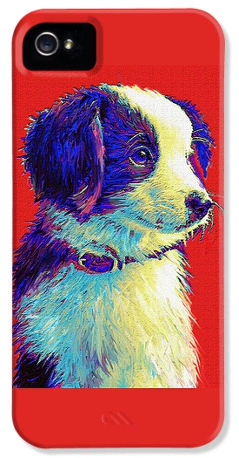 Puppy IPhone 5 Case featuring the digital art Border Collie Puppy by Jane Schnetlage