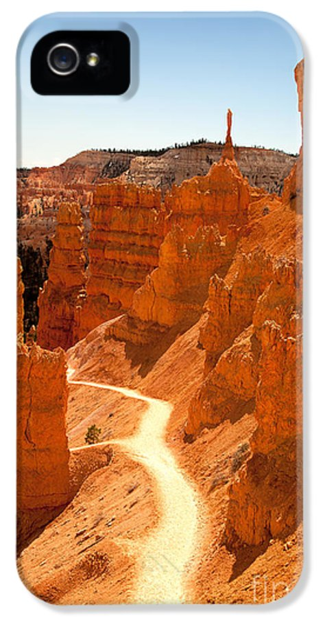 America IPhone 5 Case featuring the photograph Bryce Canyon Trail by Jane Rix