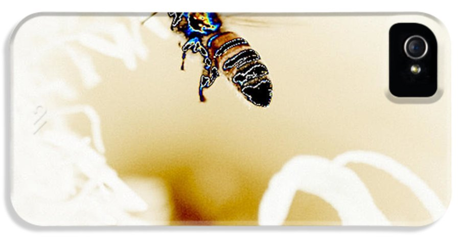 Flora IPhone 5 Case featuring the pyrography Busy Bee by Jacob Sela