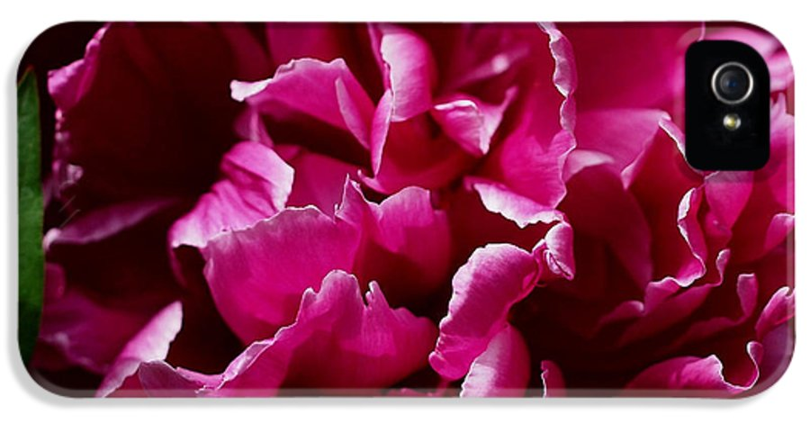 Peonies IPhone 5 Case featuring the photograph But For A Moment by Rona Black