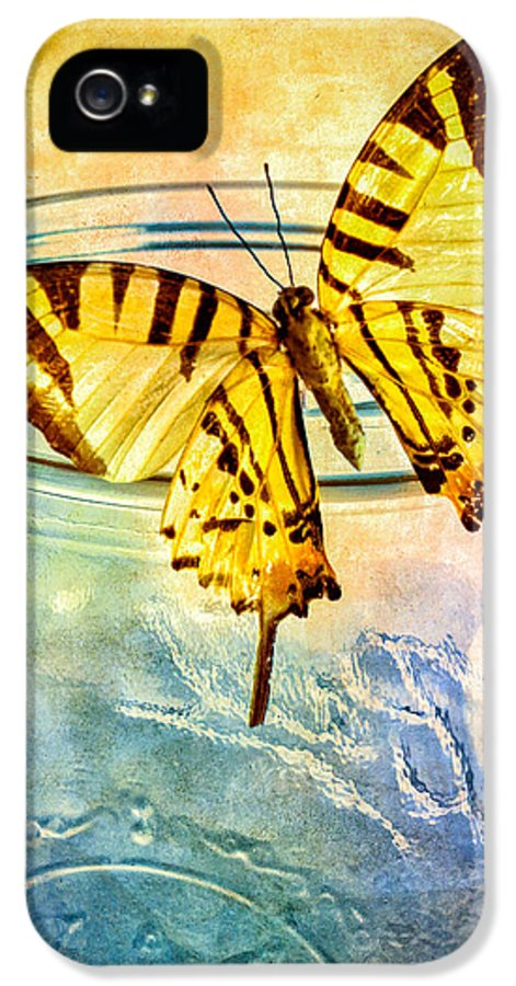 Blue Glass IPhone 5 Case featuring the photograph Butterfly Blue Glass Jar by Bob Orsillo