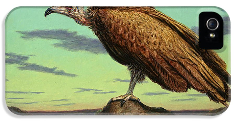 Buzzard IPhone 5 Case featuring the painting Buzzard Rock by James W Johnson