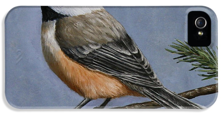 Bird IPhone 5 / 5s Case featuring the painting Chickadee Charm by Crista Forest