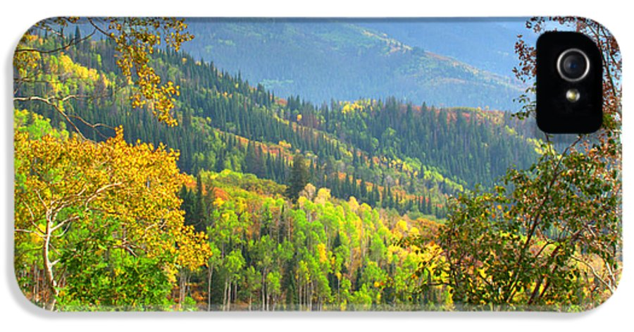 Colorful Colorado Turning Aspens Mountain Landscape Scene IPhone 5 Case featuring the photograph Colorful Colorado by Brian Harig