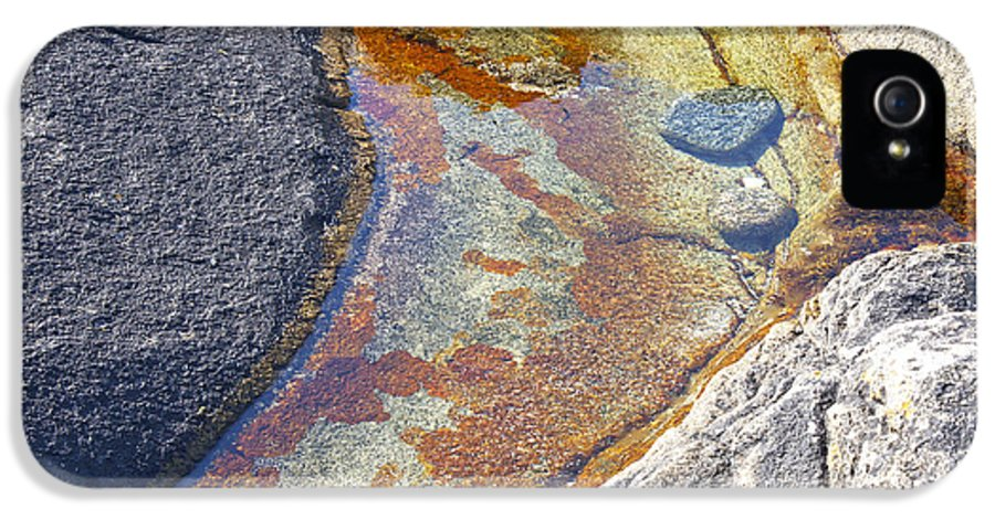 Lichen IPhone 5 Case featuring the photograph Colors On Rock by Heiko Koehrer-Wagner