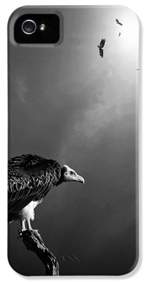 Vulture IPhone 5 Case featuring the photograph Conceptual - Vultures Awaiting by Johan Swanepoel