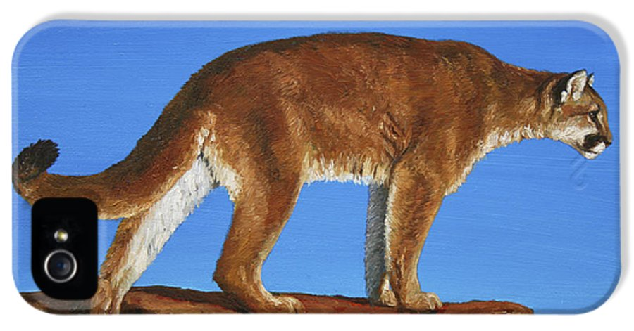 Cat IPhone 5 Case featuring the painting Cougar Cliff by Crista Forest