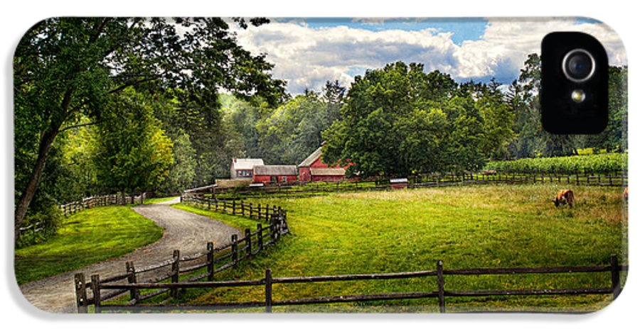 Cow IPhone 5 Case featuring the photograph Country - The Pasture by Mike Savad