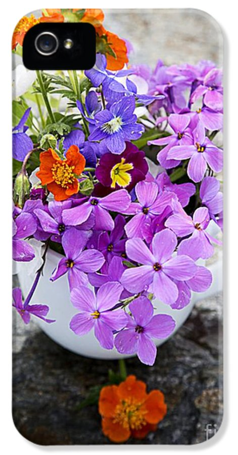 Colorful IPhone 5 Case featuring the photograph Cup Full Of Wildflowers by Edward Fielding