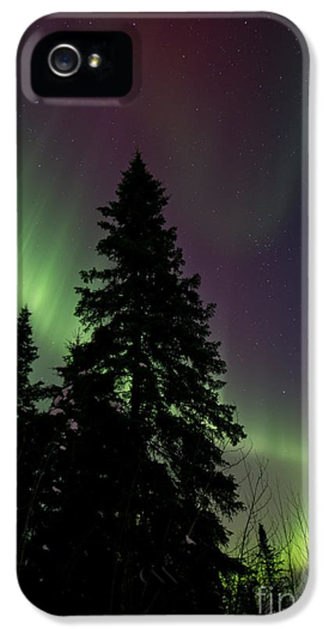 Northern Lights IPhone 5 Case featuring the photograph Curtain Of Colours by Priska Wettstein