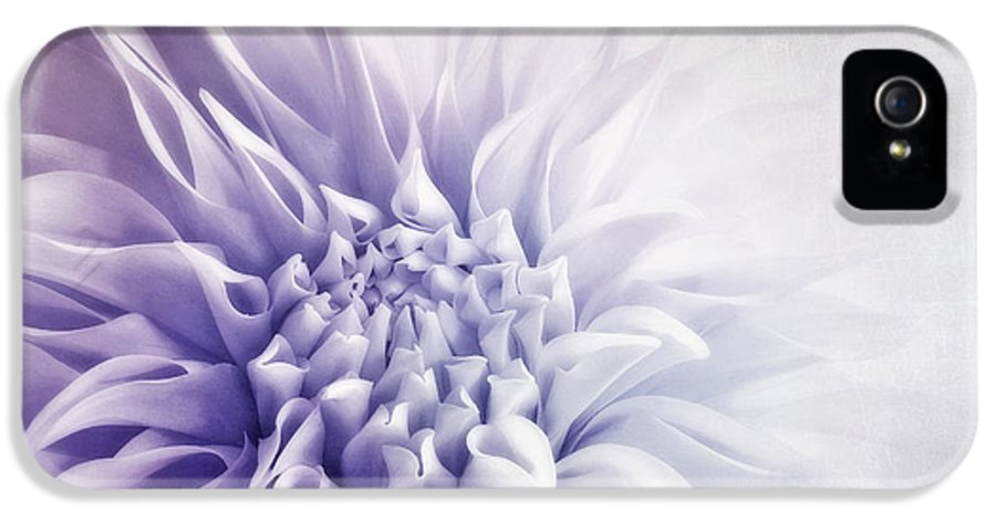 Macro IPhone 5 Case featuring the photograph Dahlia Sun by Priska Wettstein
