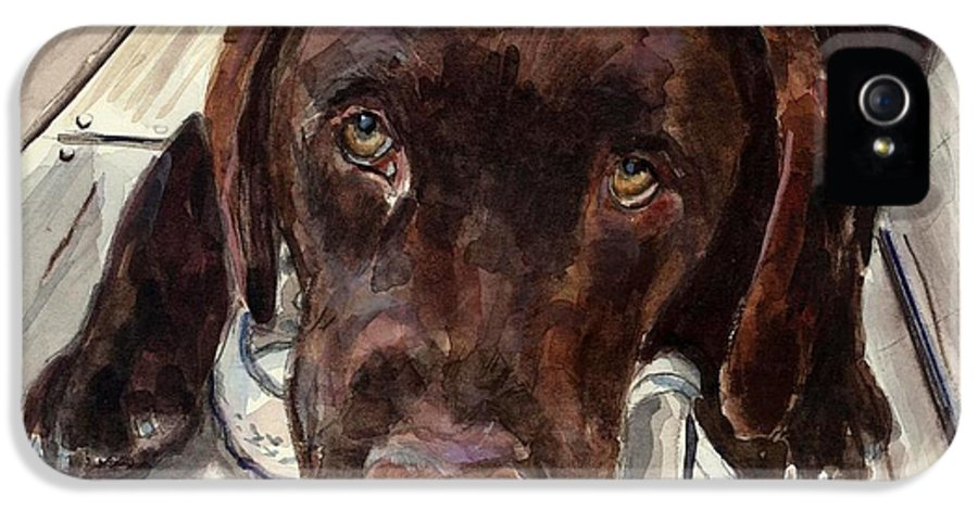 Chocolate Labrador IPhone 5 Case featuring the painting Deckhand by Molly Poole