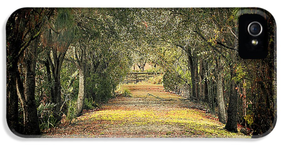 Path IPhone 5 Case featuring the photograph Down The Lane by Gail Falcon